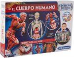 Juguetes sobre anatomía humana