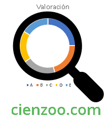 Rankings y valoraciones de productos